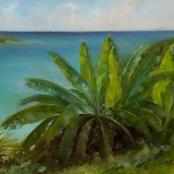 the-banana-tree-mccomas